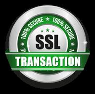 ssl security 100